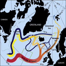 Figure 1. Pathways associated with the transformation of warm subtropical waters into colder subpolar and polar waters in the northern North Atlantic. Along the subpolar gyre pathway the red to yellow transition indicates the cooling to Labrador Sea Water, which flows back to the subtropical gyre in the west as an intermediate depth current (yellow). The green square shows the position of the front in the course of one year.   Credit: ©Jack Cook, Woods Hole OI